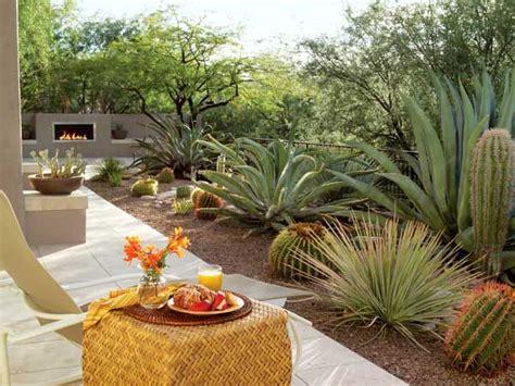 best 25 desert landscaping backyard ideas on pinterest low water landscaping desert