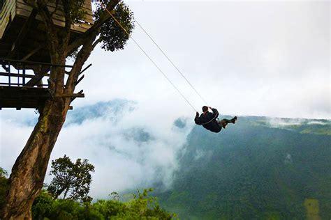 death swing amazing tiny treehouse boasts the world s wildest swing
