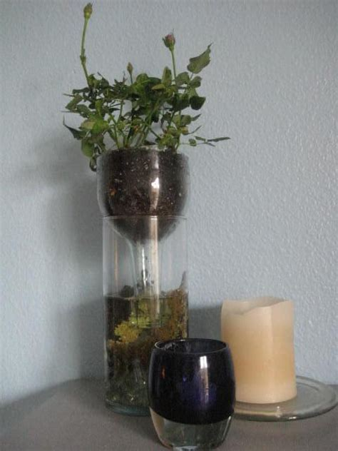diy self watering planter wine bottle planter 12 diy s guide patterns