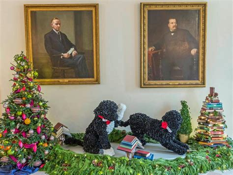dog white house white house christmas first dog bo white house christmas 2014 hgtv