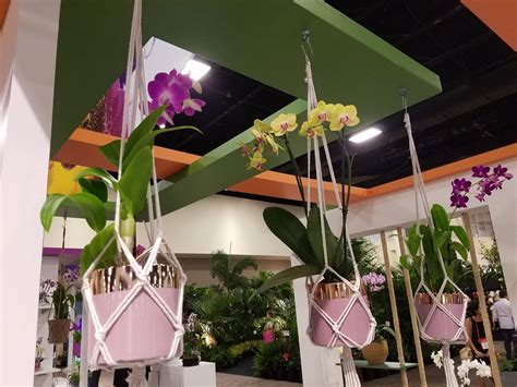 Decor Plants Flashback Flashbacks In Florida At The Tropical Plant Industry Expo