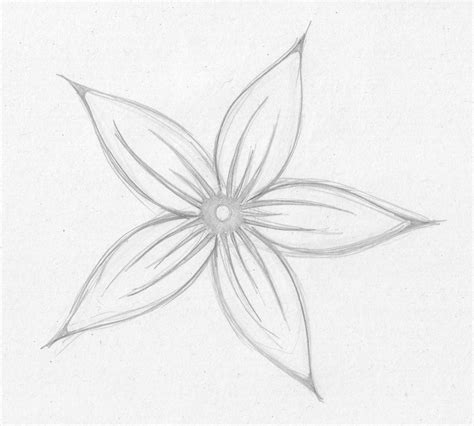 Sketches Flowers by Sketches Of Flowers Drawing Pencil