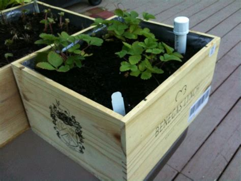 Wine Box Planter Diy by 30 Creative Diy Raised Garden Bed Ideas And Projects