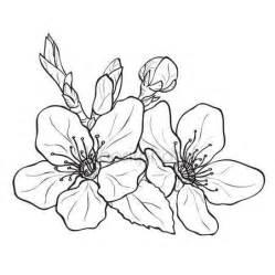 fiori di pesco disegno oltre 25 fantastiche idee su tatuaggi di fiori su