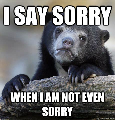 Sorry Meme - confession bear sorry im not sorry memes