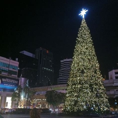 christmas trees in bangkok