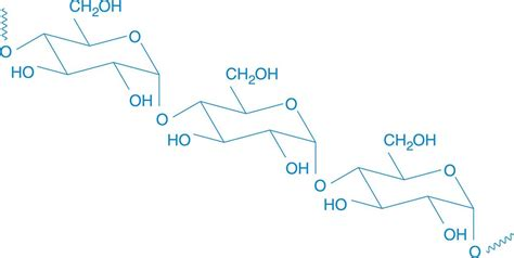 carbohydrates mcat complex carbohydrates carbohydrate structure and