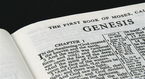bible study genesis 1 how environmentalism harms the poor crisis magazine