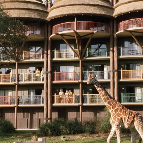 jambo house animal kingdom villas jambo house 28 images disney s animal kingdom lodge jambo