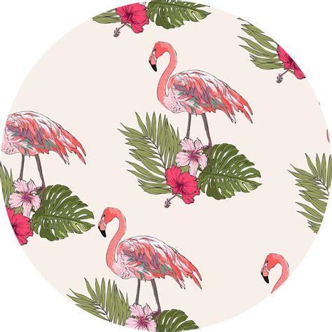 wallpaper direct flamingos 20 best fun flamingo wallpaper images on pinterest