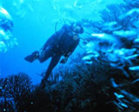 marine biologist science careers description facts