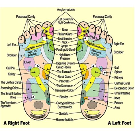 Best Foot Detox System by 17 Best Images About Physical On
