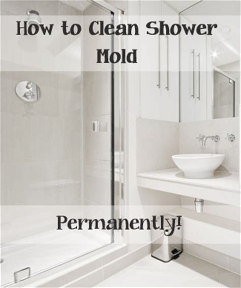 the best way to clean shower mold permanently