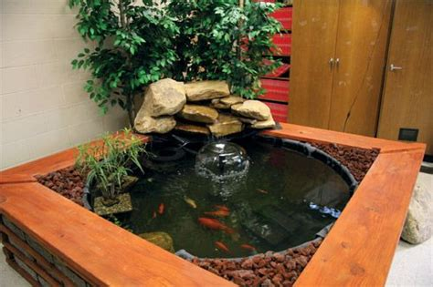 indoor fish pond indoor fish pond i ll have to add the stones on the side