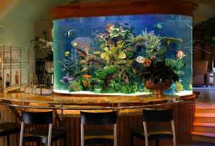 Aquarium Bar 30 Creative Aquariums Ideas For Fish Lover 14 Is Best