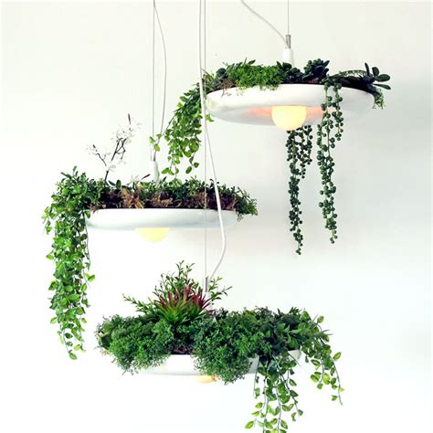 Plant Light Fixtures Hanging Pot Plant L Droplight Fixture Pendant Ceiling Light Home Decor White Ebay