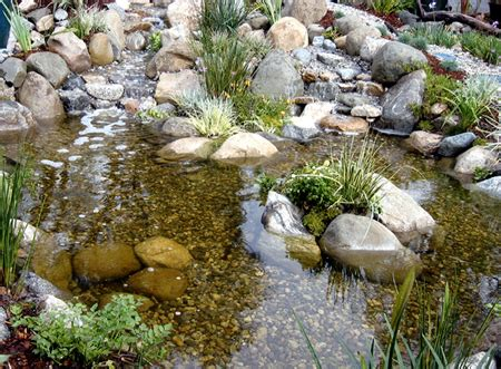 natural backyard pond water garden pond and waterfall supplies