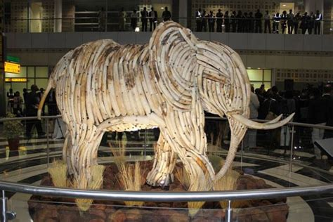 Elephant ivory sculpture unveiled at Botswana airport ...