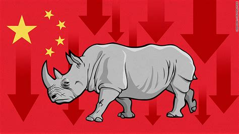 what is good for hard to manage gray hair what s a gray rhino and why did it cause chinese stocks