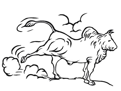 bull coloring bull coloring pages to and print for free