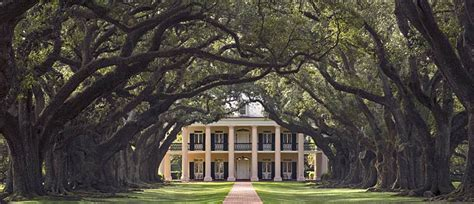 Antebellum Planters by Oak Alley Plantation In Louisiana Between Baton And