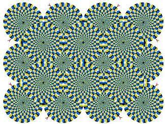 imagenes visuales cromaticas definicion definici 243 n de percepci 243 n visual qu 233 es significado y