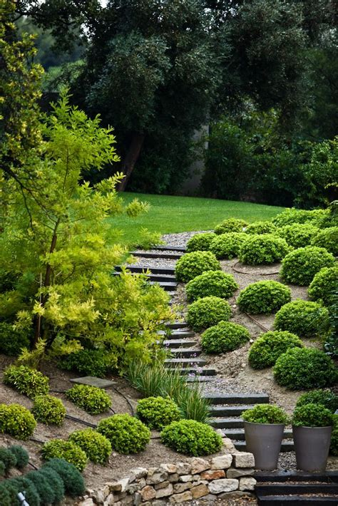 Landscaping Steep Hill Backyard by 17 Best Ideas About Steep Backyard On Steep