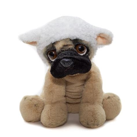 pugs accessories reliable information about the pug s accessories m