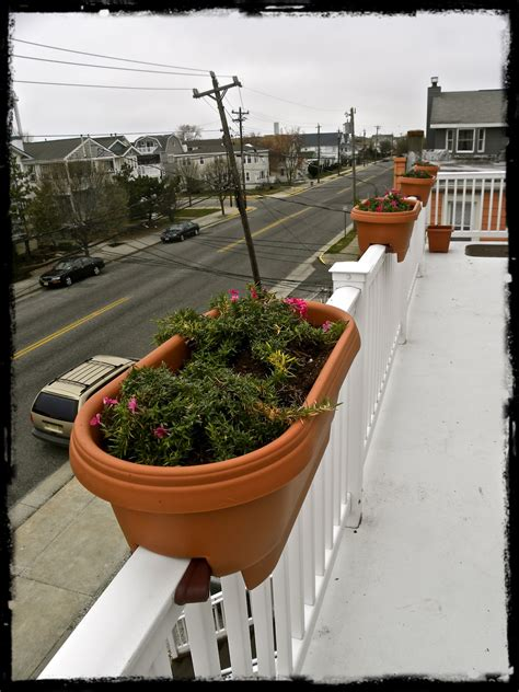 decor stylish deck rail planters  outdoor decoration