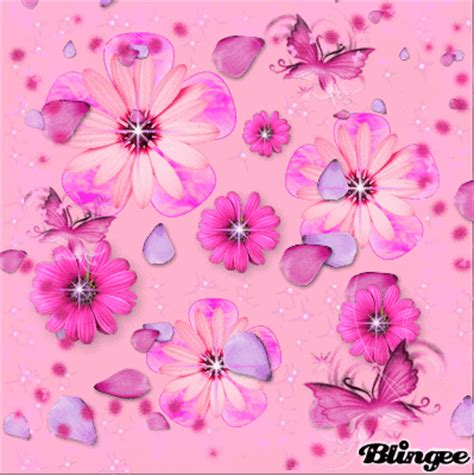 group of pink flowers and butterflies