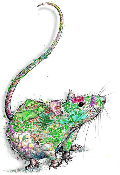 rat tattoo pinterest rat