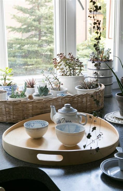 images  plant filled homes  pinterest