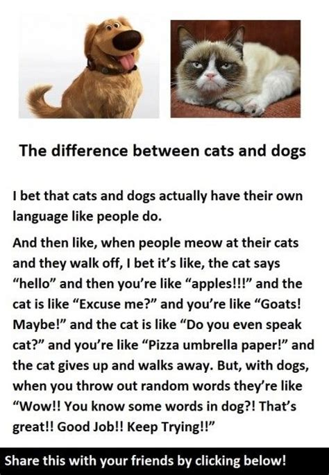 difference between and dogs the difference between cats and dogs words to live by