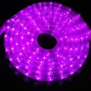 purple outdoor lights outdoor indoor purple led 30 rope light ebay