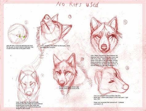 watercolor wolf tutorial wolf drawing tutorial by b theawsomegeek on deviantart