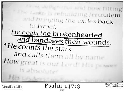 he heals the brokenhearted living and loving after rejection books 123 best images about psalm bible verse images on