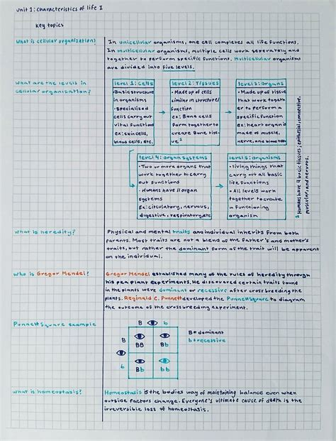 color coding notes 101 by aca demia note key and third