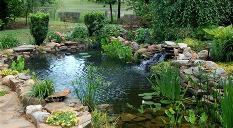 Fabriquer Un Bassin De Jardin
