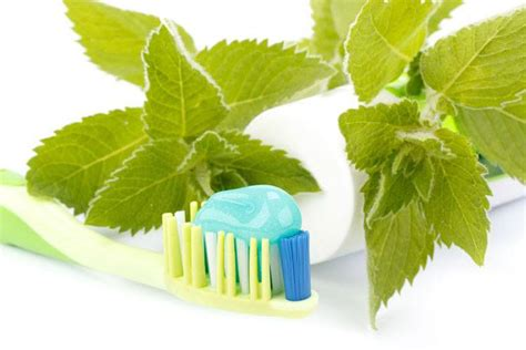 natural toothpaste review top organic brands dentalsreview