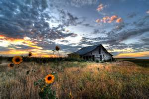 the flower barn sunflower sunset at osage barn by mbryan777 photo