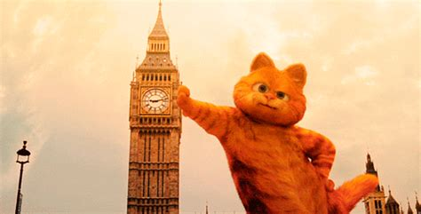 garfield cat wallpaper tumblr london garfield gif find share on giphy