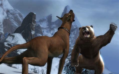 vs puppy vs breeds picture