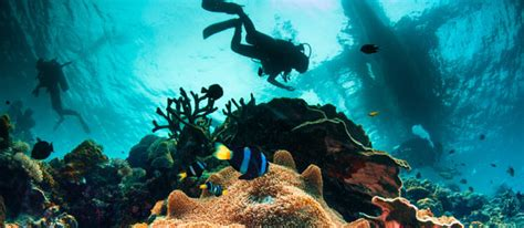 mozambique for scuba diving backpacking beaches and privacy