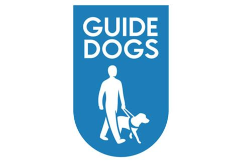 how to a guide for the blind guide dogs for blind guide owners scared of going out in because of how