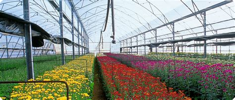 drip irrigation design full system design access