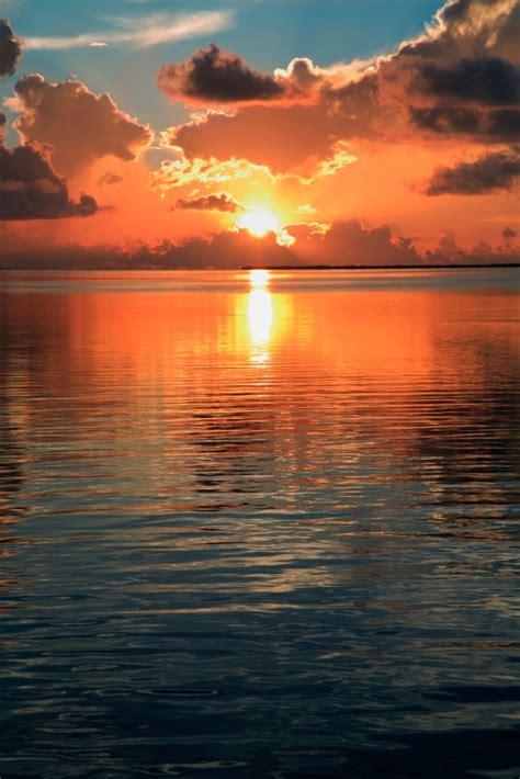 naples california boat rentals anna maria longboat key or sarasota where is the