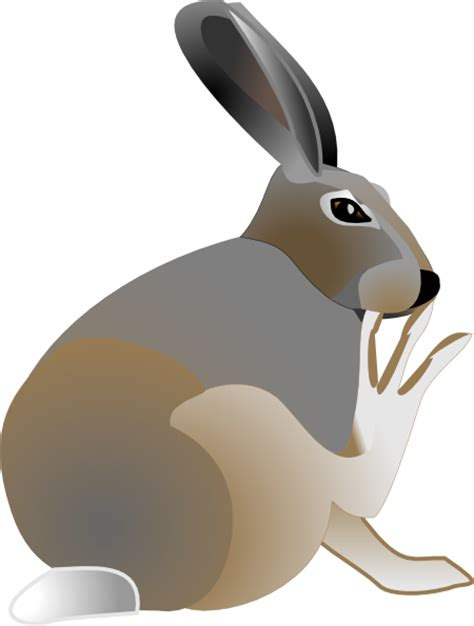 rabbit sitting clip art  clkercom vector clip art