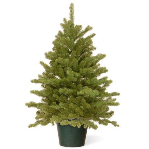 3ft real tree at lowes 3ft hton spruce potted feel real artificial tree garden world