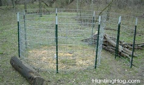 the cattle panel hog trap with easy door design