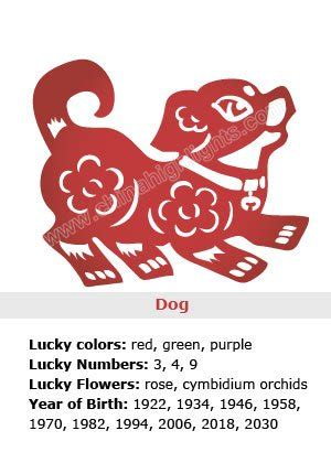 new year animals lucky numbers zodiac sign symbolism